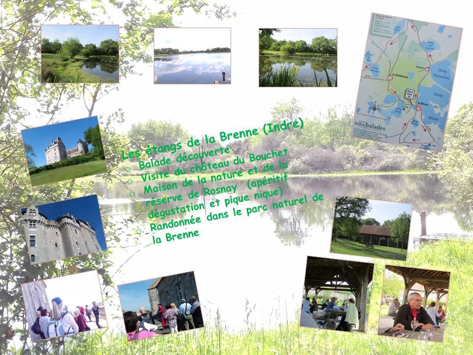 Etangs de la Brenne (36)-  22/05/2019
